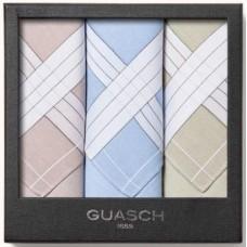 Чоловічі носові хустинки Guasch Apolo 95-03